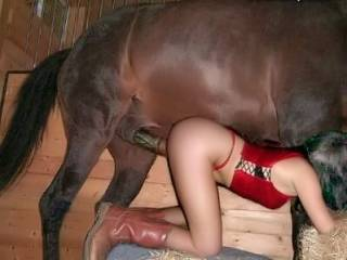 hot babe fucked hard by the horse in the barn